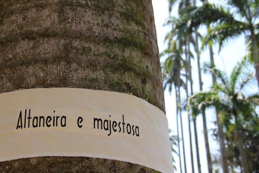 fazer parte das árvores_1